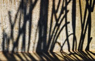 Gate_shadow
