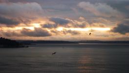 Sunset010206